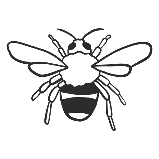 Bee wasp stripe wing doodle insect Transparent PNG