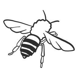 Abeja avispa raya ala insecto doodle