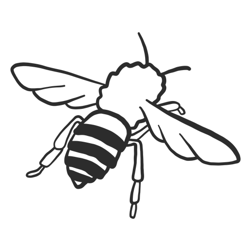Bee wasp wing stripe doodle insect Transparent PNG