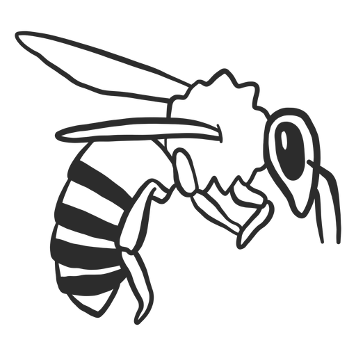 Bee wing wasp stripe doodle insect Transparent PNG