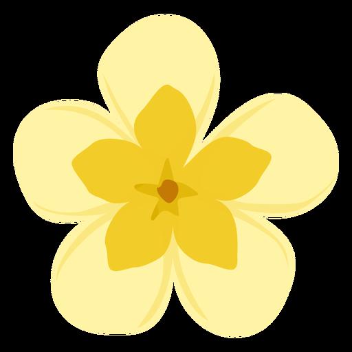Brote flor pétalo planta plana Transparent PNG