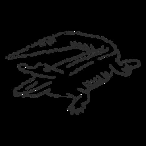 Crocodile alligator jaws tail fang doodle animal