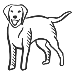 Perro cachorro cola lengua oreja doodle animal