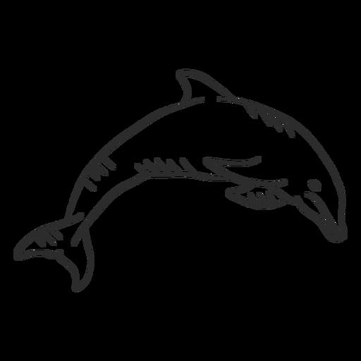 Aleta delfín nadando cola doodle animal Transparent PNG