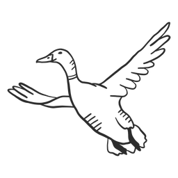 Duck drake wild duck beak wing flying doodle bird