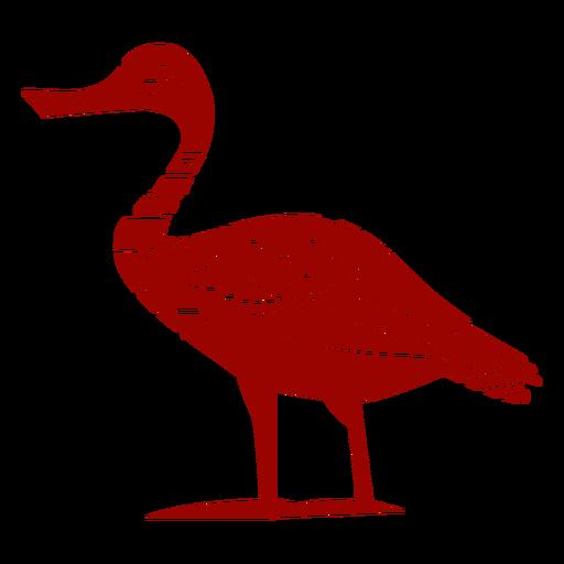 Duck drake wild duck beak wing pattern detailed silhouette bird
