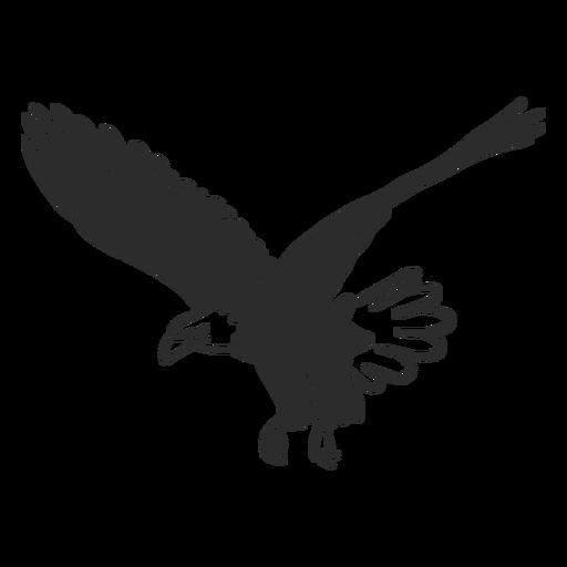 Águia voadora asa bico garra doodle pássaro Transparent PNG