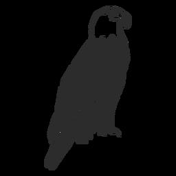 Eagle wing beak talon doodle bird