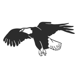 Eagle wing flying beak talon doodle bird
