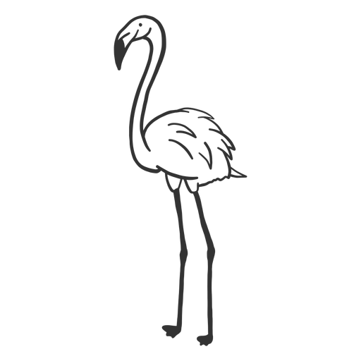 Flamingo neck leg beak doodle bird Transparent PNG