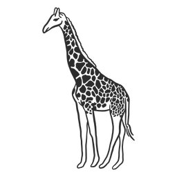 Jirafa mancha cuello ossicones cola doodle animal