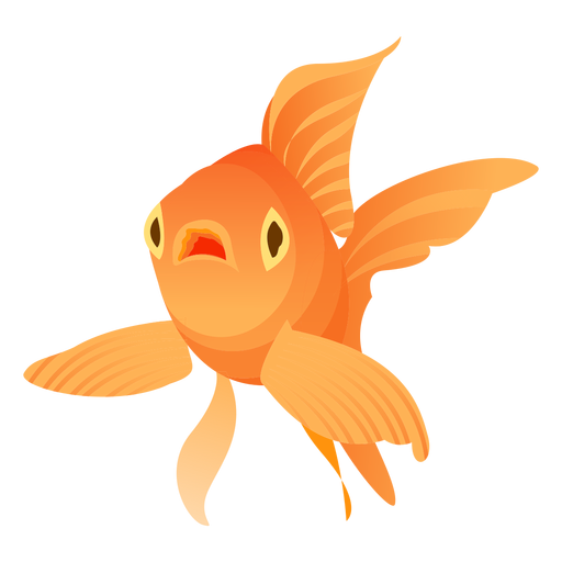 Goldfish flipper gills tail illustration fish Transparent PNG