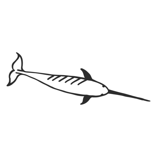 Narwhal flipper tail tusk doodle mammal