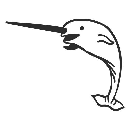 Narwhal tail tusk flipper doodle mammal