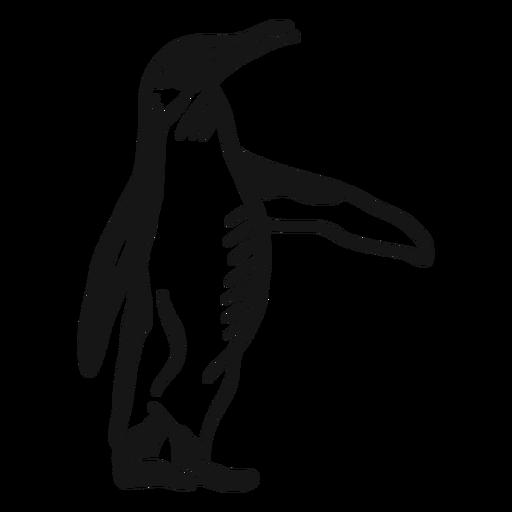 Pingüino ala pico pierna doodle pájaro