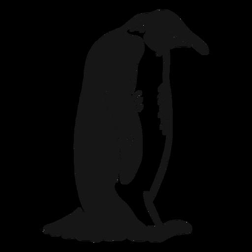 Pingüino ala pico sentado doodle pájaro