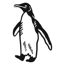 Pinguim asa perna bico doodle pássaro
