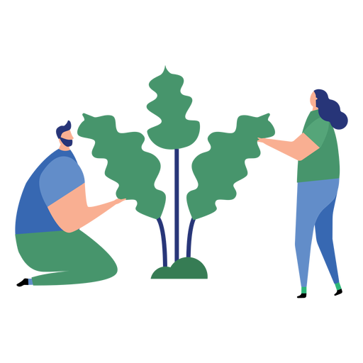 Plant man woman tree leaf flat person Transparent PNG