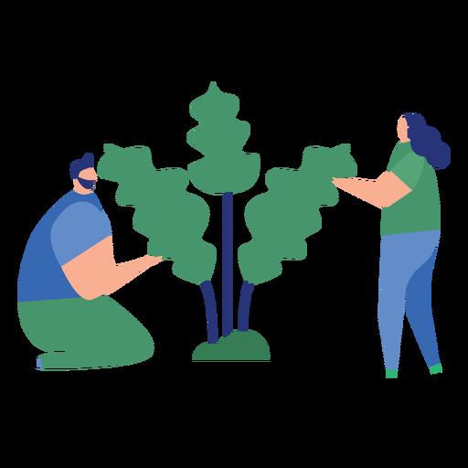 Plant man woman tree leaf flat person