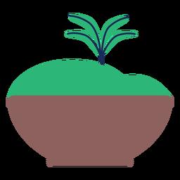 Flache Natur des Topfdüngemittelblattbetriebsbaums