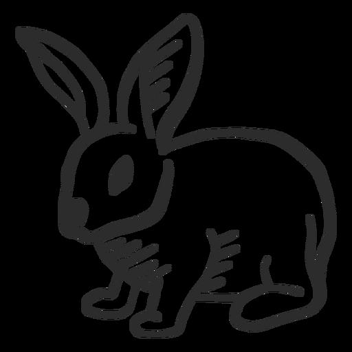 Conejo conejo hocico oreja doodle liebre Transparent PNG