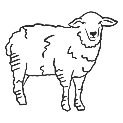 Sheep lamb hoof wool ear doodle animal Transparent PNG