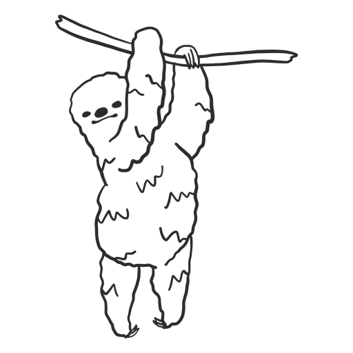Sloth branch tree claw doodle animal Transparent PNG
