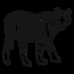 Tiger Mündungsstreifen Ohr Schwanz Gekritzel Katze