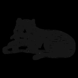 Tigre hocico raya oreja cola acostado garabato gato