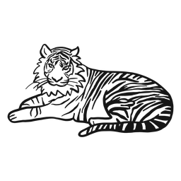 Tigre hocico raya oreja cola mentira doodle gato