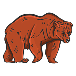 Bärenfell Grizzly farbige Skizze