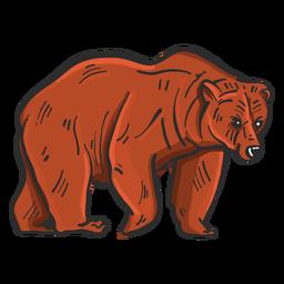 Esboço colorido urso pardo da pele