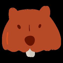 Pele de castor plana