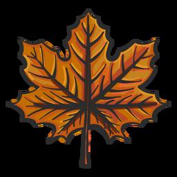 Esboço colorido de maple folha