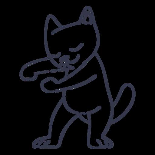 Cat dancing dance stroke