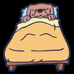 Cachorro dormindo cama plana golpe