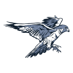 Falcon wing beak illustration