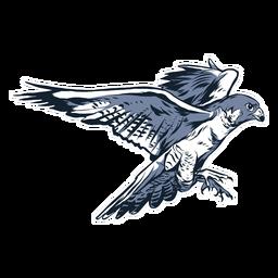 Ilustración de pico de ala de halcón