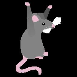 Postura de la cola del ratón plana