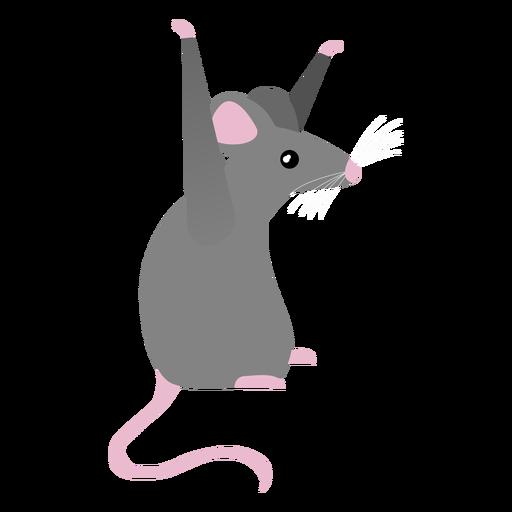 Postura de la cola del rat?n plana