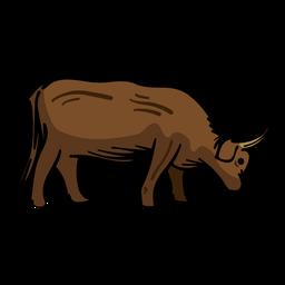 Vaca touro plana
