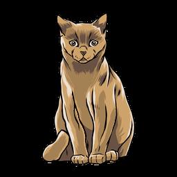 Gato sentado ilustração animal