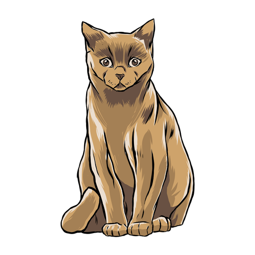 Gato sentado ilustración animal Transparent PNG