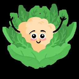 Cauliflower cauli flat