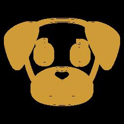 Cão alegre cabeça focinho plana