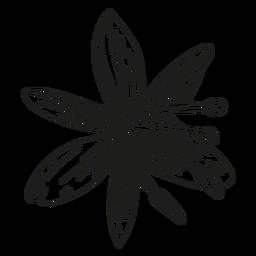 Línea de estambre de pétalos de flores