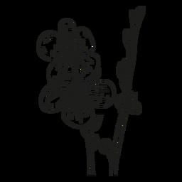 Blütenblattstammlinie des Blumenstaubgefässes