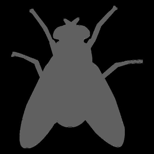 Fly wing feeler silhouette