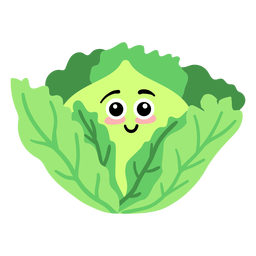 Leaf cabbage flat