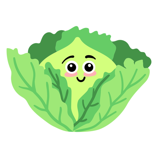 Leaf cabbage flat Transparent PNG